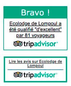 TripAdvisor - Badge BRAVO