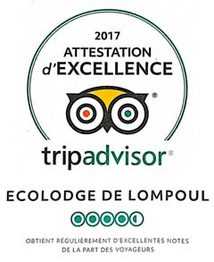 Badge Trip Advisor - Attestation Excellence 2017