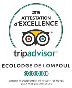 Badge Trip Advisor - Attestation Excellence 2018