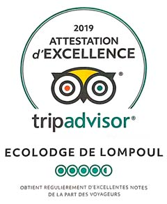 TripAdvisor, attestation d'excellence 2019